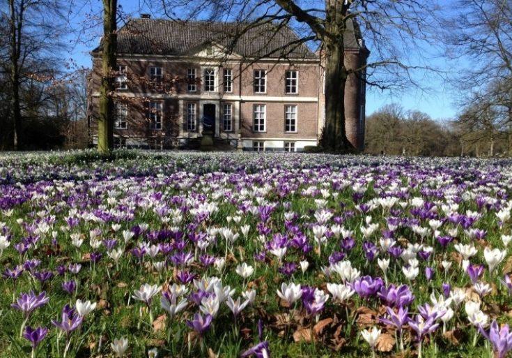 Contact Bronckhorst Noord 04 Hackfort